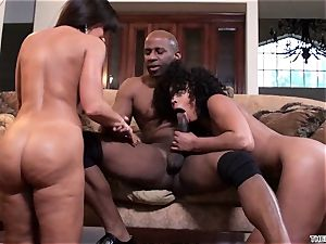 Lisa Ann and Misty Stone drool over this stiff trunk